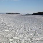 Östersjön är helt täckt med is.
