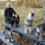 Marie försöker att få några av hundarna att stå still