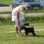 Marie använder en lite råtta för att fånga Moa uppmärksamhet